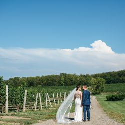 WEDDING-COUPLE-IN-THE-VINEYARD-AT-VINELAND-ESTATES-WEDDING